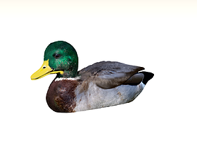 3D printable model Duck with Duckling
