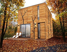 modern-contemporary micro house on 22 m2 3D asset