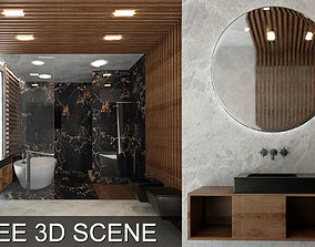 Bathroom Scene 3D Models Free - Video Timelapse in the 1