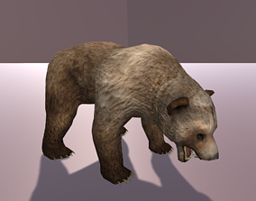 3D asset animated Grizzly Bear