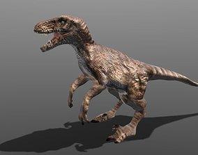 game-ready Velociraptor 3d model
