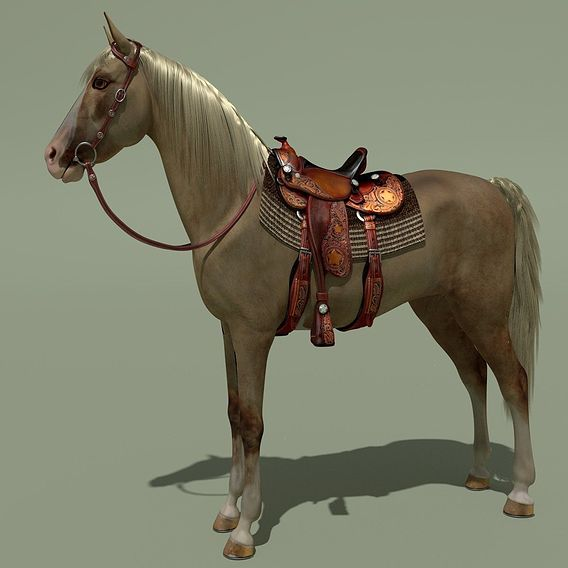 Cowboy Horse Palomino