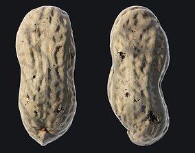 Peanut A 3D model
