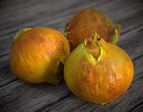 PBR Onion 3d Scan