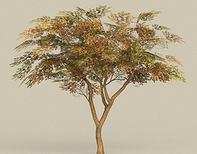 Game Ready Tree 18 3D asset