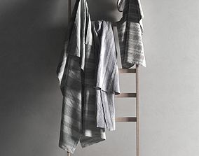 Ladder with Towels 2 3D