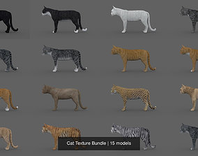Cat Texture Bundle 3D