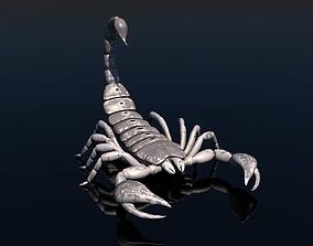 3D model rigged Scorpion poison animal