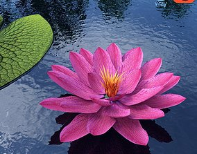 3D model Water Lily - Plant - 0001