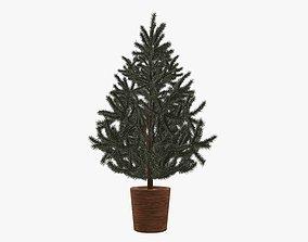 3D model Fir tree artificial 05