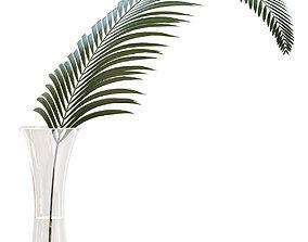 3D Glass vase with exotic Howea plant