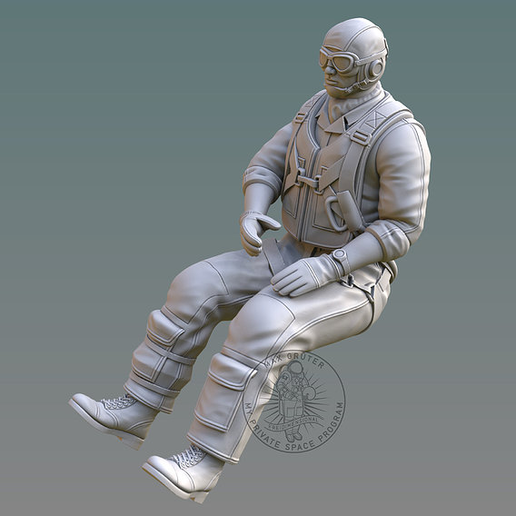 US NAVY PILOT 3D print model