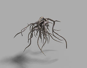 3D asset low poly tree root 2