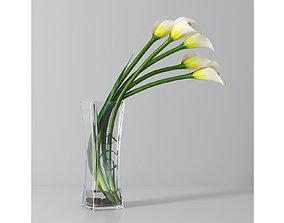 3D model Calla lily 03