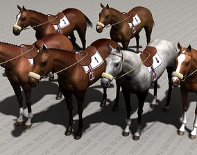 3D Thoroughbred Horse - Race Horse - Adult Male - 6 1