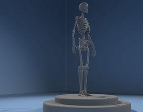 3D human spine skeleton