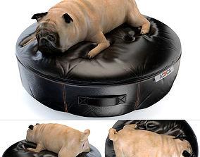 Fat dog 3D