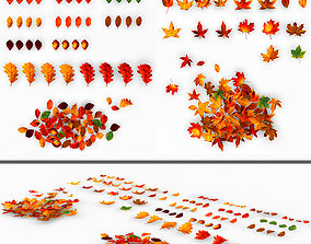3D Collection of Autumn and summer leaves