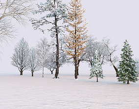 3D Winter Environment Collection