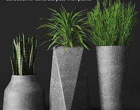 3D Potted plants