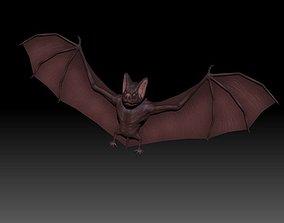 rigged 3D Bat