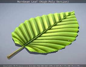 Hornbeam Leaf High-Poly-Version 3D model