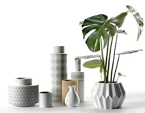 Vase Set with Monstera Plant 3D model