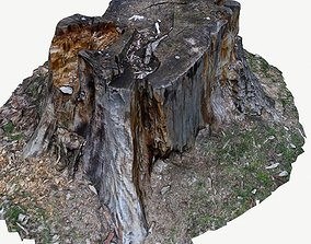 realtime 3d scan BPR tree stump 05