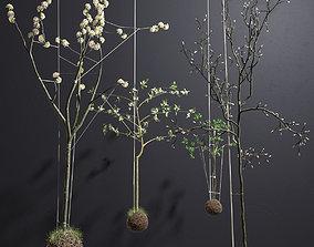 String Garden 3D model