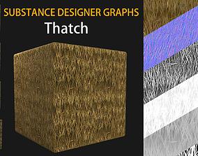 3D model Substance Designer Graphs of Variable Thatch Set