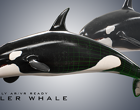 3D asset Killer Whale