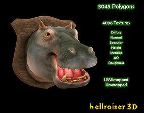 3D model Hippopotamus - Hippo - Head