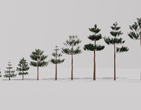 3D model Game Ready Low Poly Pine Tree Collection