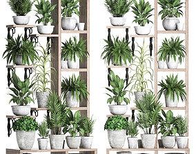 Plants collection Vertical gardening 28 2 3D model