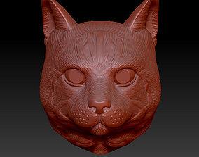 cat head model