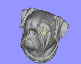 3D print model Boxer head