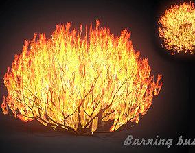 3D asset Burning bush