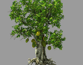 3D Hundred Forests-Plants-Jackfruit 21
