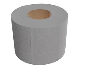 various 3D model realtime toilet paper