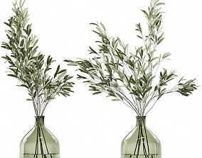 3D model Olive stems in glass vase with water