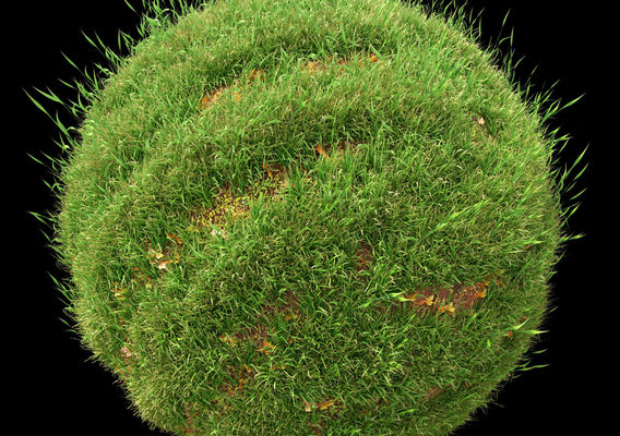Wild Grass - Corona Scatter and 3Ds Max