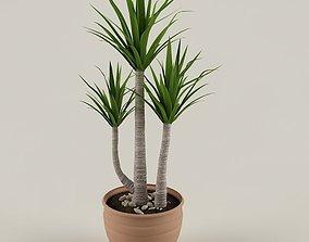 Plant 02 3D