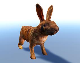 Rabbit 3D Model animated