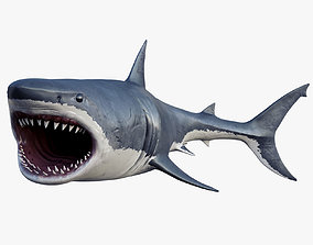 rigged realistic 3D model Rigged Great White Shark