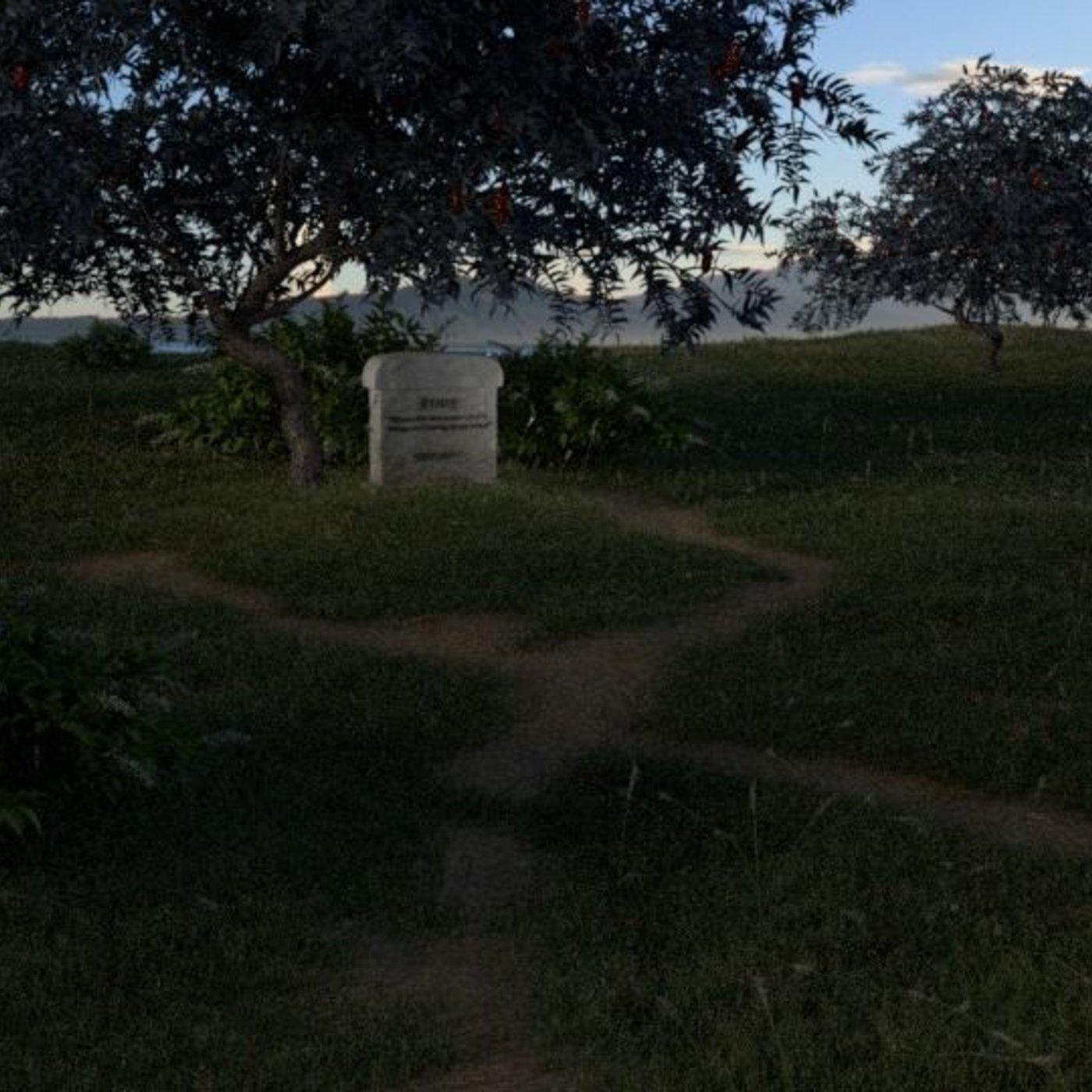 A quiet spot