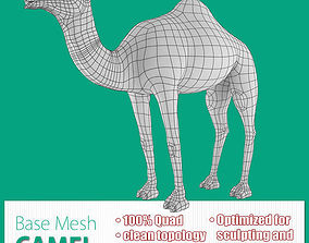 3D asset Camel Base Mesh