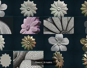 Flowers flower 3D