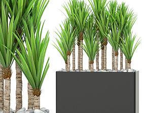 3D Plants collection 382
