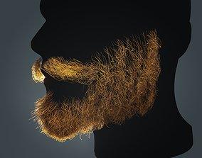 3D model Beard RealTime 13 Version 2 Low Poly