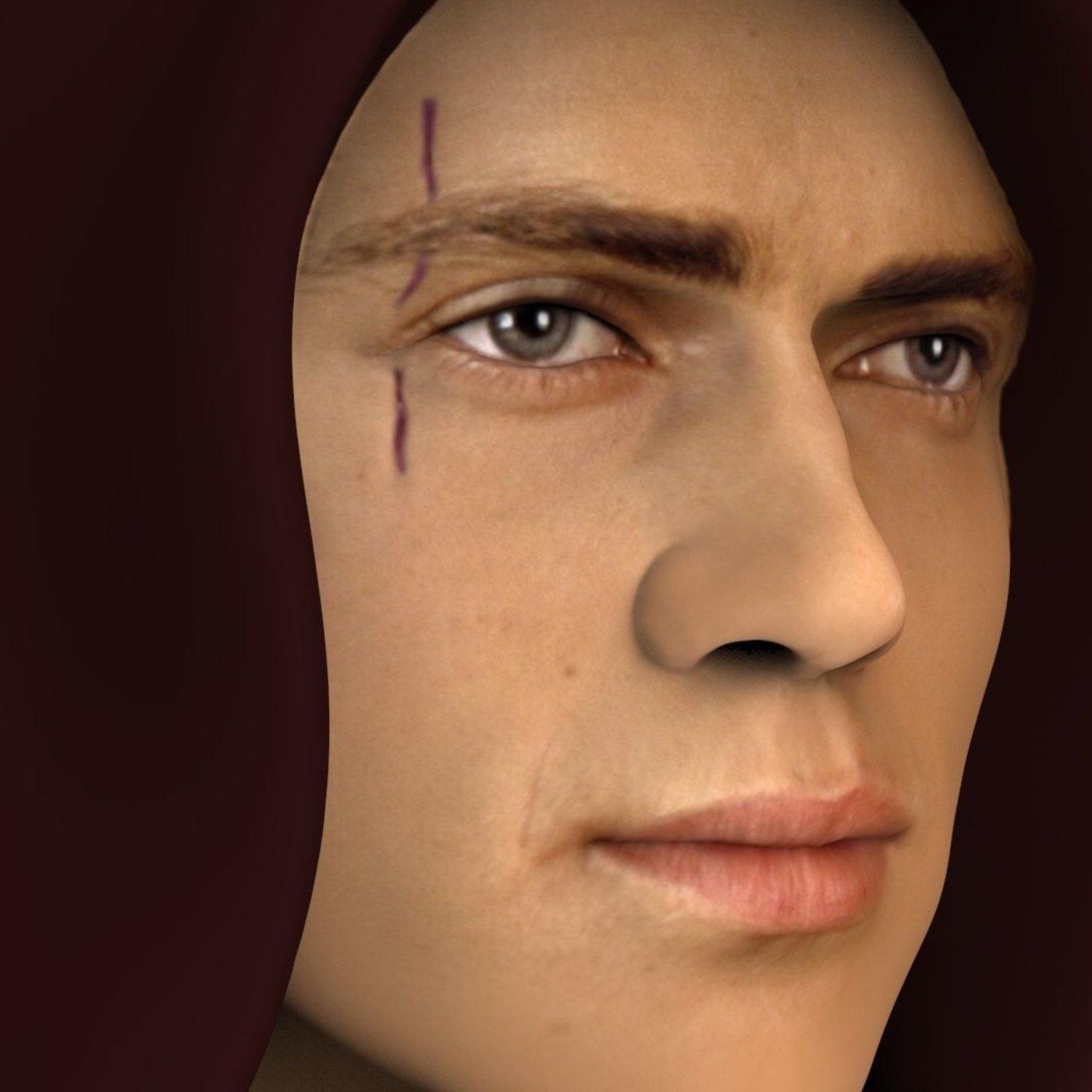 Anakin Skywalker bust